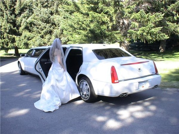 photo 8 of Vancouver Wedding Transportation  LimoLimo.ca